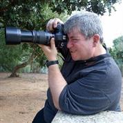 טוני הזברה זברה נראות דיגיטלית רווחית